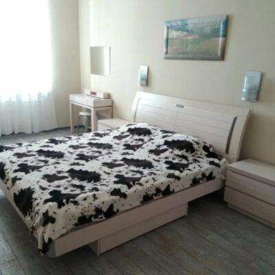 2 комнатная квартира в центре на Чайковского