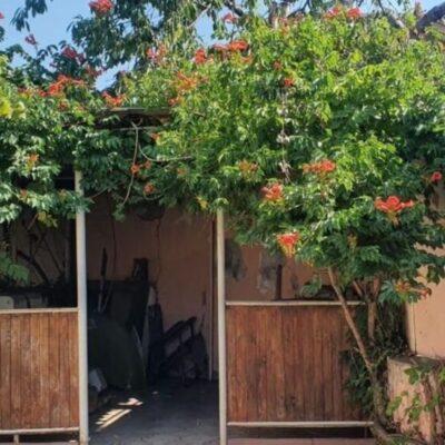 Дом на Деревообделочном 5 переулке