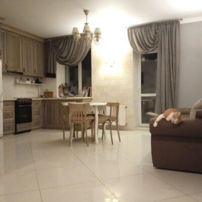 2-комнатная квартира на улице Бреуса